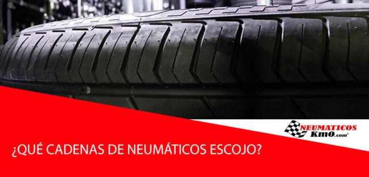 neumático de perfil